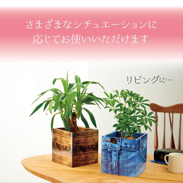 おしゃれ,植木鉢カバー